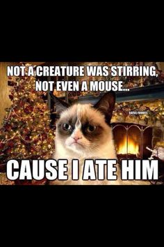 Grumpy Cat. How could you! Now the poetic Christmas story is ruined! Good job. lol XD