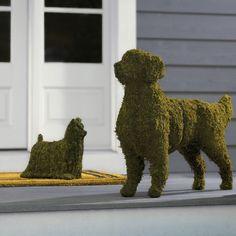 Canine Garden Topiarie