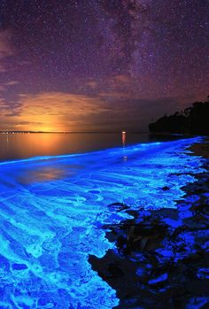 Australian Sunset illuminated with the blue glow of bioluminescent algae.