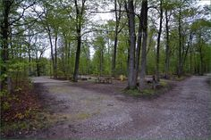 Silver Lake Provincial Park, Camping in Ontario Parks Ontario Parks, Silver Lake, Campsite, Picture Video, Country Roads, Pictures, Outdoors, Photos, Camping