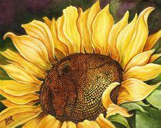 Sunflower Bloom I Painting  - Sunflower Bloom I Fine Art Print