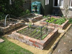 Raised Beds Update Brick Raised Beds, wish I had a pile (like a HUGE pile) of free salvaged bricks around to use for this!Brick Raised Beds, wish I had a pile (like a HUGE pile) of free salvaged bricks around to use for this!