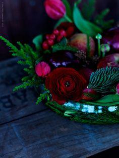 winter roses...