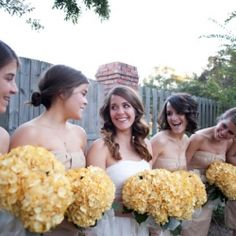 Honey yellow hydrangeas with red roses and red/orange calla lilies.  Yes please!