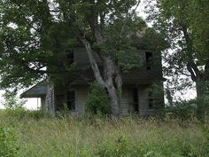 Frontal view of an old abandoned house along NC47W, near Denton, NC