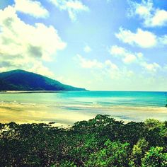 cape tribulation [where the daintree rainforest meets the great barrier reef] Daintree Rainforest, Great Barrier Reef, Places To See, Cape, Island, Mountains, Beach, Instagram Posts, Travel