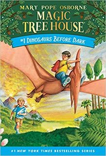 Owlihoo: Using The Magic Tree House Books with Intellectual... Book Series, Book 1, The Book, Mary Pope Osborne, Long Books, Children's Books, Magic House, Magic Treehouse, Chapter Books