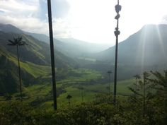 The view down into Cocora Valley