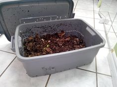 Apartment Composting… with Worms! Composting, Worms, How To Dry Basil, Recycling, House, Ideas, Food, Home, Haus