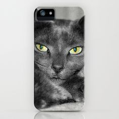 Cats Eyes iPhone Case by Fiona & Paul Photography and Digital Art - $35.00