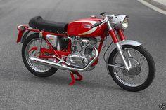 Ducati Diana 250cc