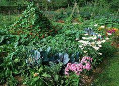 Consejos para un huerto ecológico