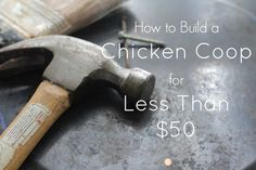 how to build a chicken coop for less than $50.