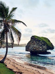 Bathsheba Rock Barbados