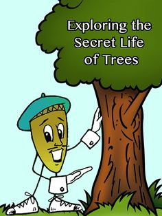Learn all about the parts of a tree and why trees are important to us!
