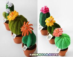 Цветущий вязаный кактус. Схемы #амигуруми #amigurumi #handmade #вязаниекрючком #игрушкакрючком #вязаниеигрушек #описание #схема #crochet #pattern #цветыкрючком #кактус