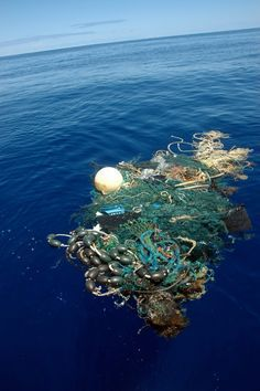 PLASTIC IS A KILLER, IF NOT PROPERLY DISPOSE OF Scientists discover pollution 10,000 meters below the ocean's surface in the Mariana Trench