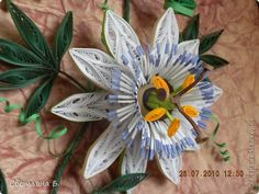 Quilled White Passion Flower - by: a Russian Artist Quilling Videos, 3d Quilling, Quilling Cards, Paper Quilling Flowers, Paper Quilling Designs, Quilling Patterns, Diy And Crafts, Arts And Crafts, Paper Crafts
