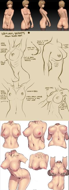 Seems to focus on breasts - all part of female anatomy though! Figure Drawing, Drawing Reference, Body Reference, Anatomy Reference, Drawing Sketches, Art Drawings, Drawing Tips, Drawing Female Body, Poses References