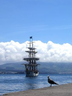 "Sail ship ""Europa"" arriving at S. Miguel Island, Azores, Portugal.  Photo by: ©Eduardo Wallenstein"