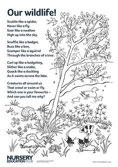 Read this fun poem to your children to inspire their imaginations before role play, wildlife-spotting activities or creative play. Forest School Activities, Poetry Activities, Eyfs Activities, Animal Activities, Autumn Activities, Toddler Activities, Woodland Animals Theme, Forest Animals, Animal Poems