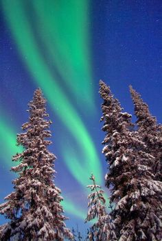 bucket list // northern lights // lapland, finland