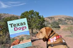 Dog-friendly destinations in Fredericksburg, Texas: an excerpt from our new DogTipper's Texas with Dogs guidebook!
