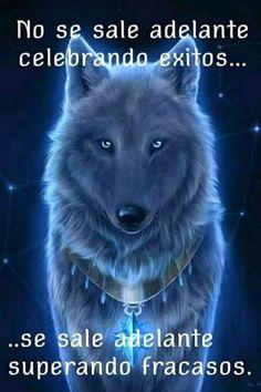 Et Lamia Lupi-Escolhida Por Lobos Motivational Phrases, Inspirational Quotes, Jiu Jitsu Frases, Native American Animals, Wolf Life, Night Gif, Wedding Readings, Wolf Quotes, Wild Creatures