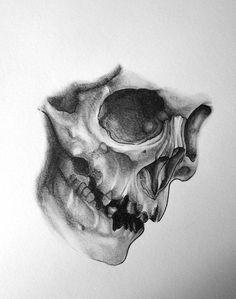 Another skull by SilentStudiosUK on DeviantArt - DeviantArt is the world's la. Bobbie Ford Bobbie Ford Another skull by SilentStudiosUK on DeviantArt - DeviantArt is the world's largest online social community for artists and art e Skull Tattoo Design, Skull Design, Skull Tattoos, Body Art Tattoos, Tattoo Designs, Tattoo Sketches, Tattoo Drawings, Drawing Sketches, Art Drawings