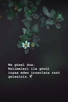 Musa Akkaya, Güzel Sözler - Bestworld Tutorial and Ideas Sad Words, Cool Words, Insprational Quotes, Literature Books, Hurt Quotes, Allah Islam, Meaningful Words, Book Quotes, Sentences