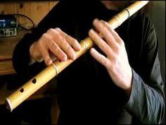 Shank's Mare - Irish Flute Tutorial - Tradschool