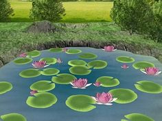 Lotus aquatic plants various plant taxa Nelumbo, (.max) 3ds max