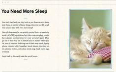 Cat's advice 6