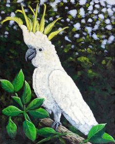 """""""Cockatoo"""" - Atelier Interactive Acrylics on stretched canvas, 16x20"""""""