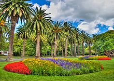 Manawatu's fertile soil and rural landscapes are home to a number of tranquil, beautiful gardens. Beautiful Gardens, New Zealand, Golf Courses, Paradise, Plants, Landscapes, Live, Landscape, Nature