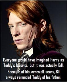 Todo el mundo habría imaginado que Harry era el favorito de Teddy, pero en realidad era Bill. Por sus cicatrices de hombrelobo, Bill siempre le recordaba a Teddy a su padre. Asked by: toliveistoovercome
