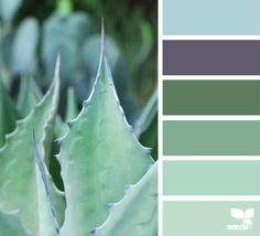 today's inspiration image for { succulent hues } is by . thank you, Emily, for another incredible image share! Design Seeds, Paint Color Schemes, Paint Colours, Sea Glass Colors, Green Colour Palette, Color Me Beautiful, Color Combos, Color Inspiration, Designer