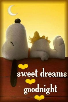 Gifs Snoopy, Images Snoopy, Snoopy Pictures, Snoopy Quotes, Snoopy Love, Charlie Brown Y Snoopy, Snoopy And Woodstock, Cute Good Night, Good Night Sweet Dreams