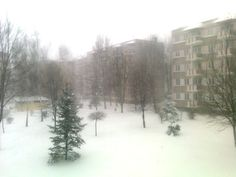 I like spring. Specially like that :(