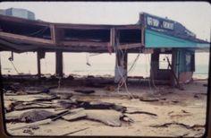 1979. The Hangout in Gulf Shores, Al. ... Hurricane Fredrick remains.