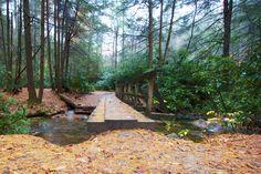 Appalachian Trail bridge over Noontoola Creek at Three Forks in Georgia's Chattahoochee National Forest