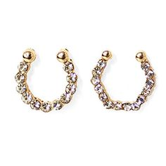 Twin Nose Rings