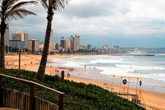 Durban, South Africa- Birthplace of my mother! I visited in grade, and I remember this beach well! On the Second day we went here, and 15 minutes of being in the water I was stung by one of the deadliest jellyfish in the ocean. All About Africa, Out Of Africa, Jacob Zuma, Places To Travel, Places To See, Wonderful Places, Beautiful Places, Durban South Africa, Kwazulu Natal