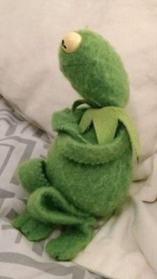 Funny Profile Pictures, Funny Reaction Pictures, Cute Pictures, Hi Meme, Hermit The Frog, Sapo Kermit, Sapo Meme, Frog Wallpaper, Cute Rats