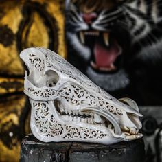 Hand Carved Pig Skull Boar/ Wild Boar Skull/ Animal by AureusArts