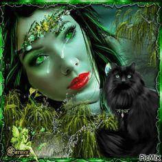 Il verde e il nero