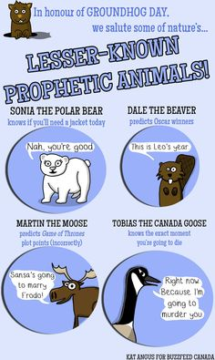 Groundhogs Aren't The Only Animals Who Can Predict The Future