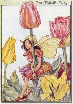 Cicely Mary Barker - Flower Fairies of the Garden - The Tulip Fairy Archival Fine Art Paper Print