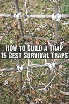 How to Build a Trap - If SHTF this is also a great way to…