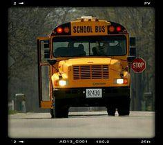 school bus driver it s what i do rh pinterest com